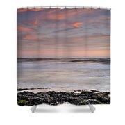 Marine Life Shower Curtain