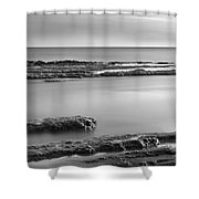 Marine Suprises Shower Curtain
