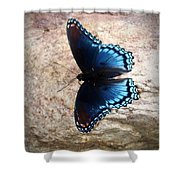 Mariposa Azul Shower Curtain
