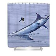 Marlin Magic Shower Curtain