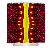 Maroon And Yellow Chrysanthemums 2 Polar Coordinates Effect Shower Curtain