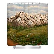Maroon Trail Splendor Shower Curtain