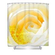 Marryrose Shower Curtain