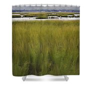 Marsh At Milford Point Shower Curtain