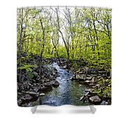 Marsh Creek In Spring Shower Curtain