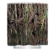 Marsh Dwellers Shower Curtain