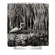 Marsh Hunter Shower Curtain