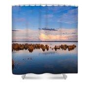 Marsh Land Shower Curtain