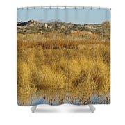 Marsh Lands In Wildlife Refuge Shower Curtain