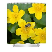 Marsh Marigold Shower Curtain