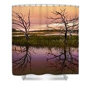 Marsh Oil Painting Shower Curtain