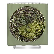 Marsh Orb Shower Curtain