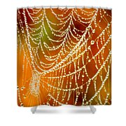 Marsh Pearls Shower Curtain by Carol Groenen