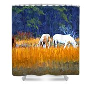 Marsh Ponies Shower Curtain