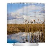 Marsh Reed Shower Curtain