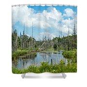 Marsh Scene Shower Curtain