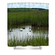 Marshlands Around Hilton Head Island Shower Curtain