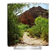 Martinez Canyon Shower Curtain