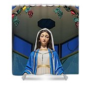 Mary And Grapes Shower Curtain