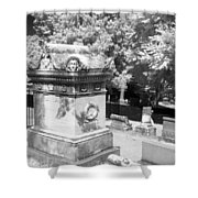 Mary And John Tyler Memorial Near Infrared Black And White Shower Curtain