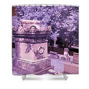 Mary And John Tyler Memorial Near Infrared Lavender And Pink Shower Curtain