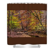 Maryland Country Roads - Autumn Colorfest No. 8 - Catoctin Mountains Frederick County Md Shower Curtain