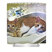 Mary's Cats Shower Curtain by Joan  Minchak