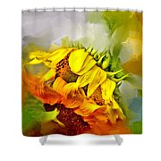 Marys Garden Shower Curtain