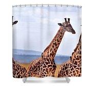 Masai Giraffe Shower Curtain