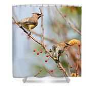 Masked Duo Shower Curtain