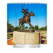 Masked Rider Statue Shower Curtain