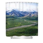Mass Wilderness Shower Curtain