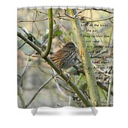 Mathew 6 Vs 26 Thrush Shower Curtain
