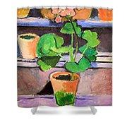 Matisse's Pot Of Geraniums Shower Curtain