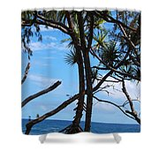 Maui Tree Silhouette Shower Curtain