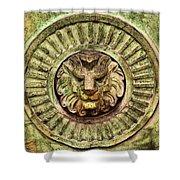Mausoleum Lion Shower Curtain