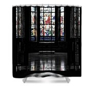 Mausoleum Stained Glass 05 Shower Curtain