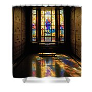 Mausoleum Stained Glass 06 Shower Curtain
