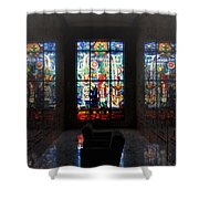 Mausoleum Stained Glass 07 Shower Curtain