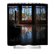 Mausoleum Stained Glass 08 Shower Curtain