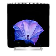Mauve Blue Black Angels Trumpet Shower Curtain