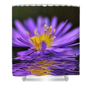 Mauve Softness And Reflections Shower Curtain by Kaye Menner