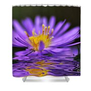 Mauve Softness And Reflections Shower Curtain