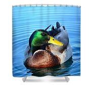 Maverick Mallard Shower Curtain