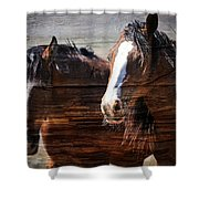 Mavericks Shower Curtain