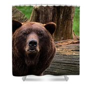 Max The Brown Bear Shower Curtain
