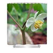 May Apple Shower Curtain