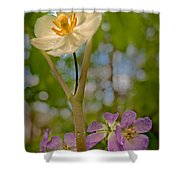 May Apples And Wild Geraniums Shower Curtain