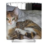 May I Be Of Service Shower Curtain