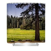 May I Intrude On Your Meadow Shower Curtain
